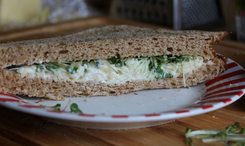 Cheese & Salad Cress Sandwich Pictures