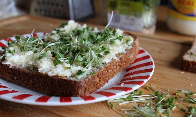 Freshly chopped salad cress on sandwich